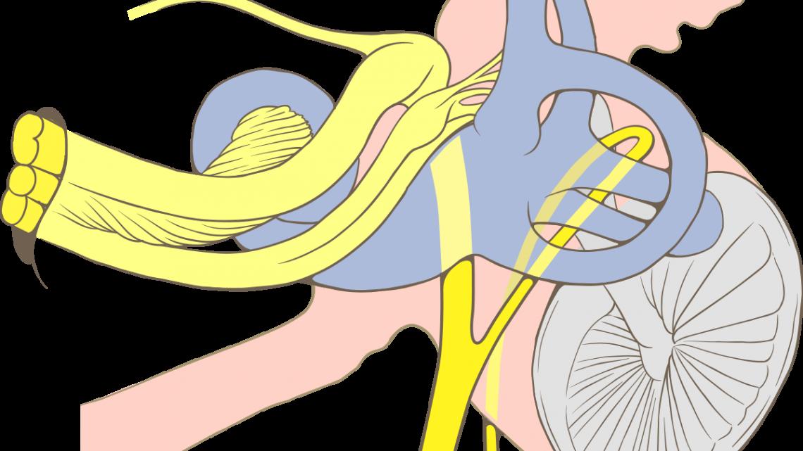 Доброкачественное позиционное пароксизмальное головокружение